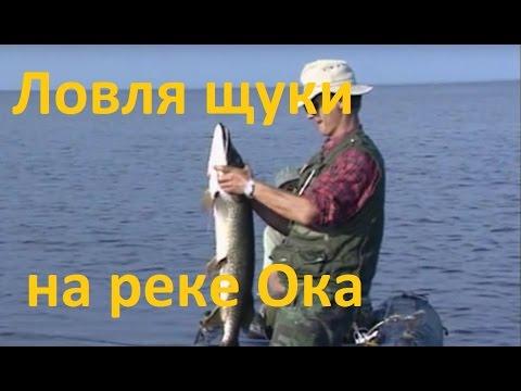 платная рыбалка на щуку в рязанской области