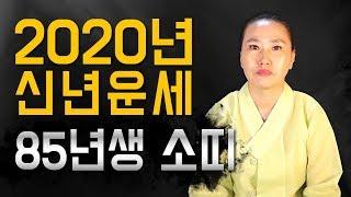 ◆ 소띠 신년운세사주 ◆  2020년 85년생 36세 소띠 신년운세사주