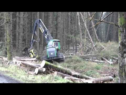 Huge trees being felled by John Deere Harvester in Galloway Forest, Scotland.