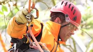 ซิกแซก สำหรับ รุกขกร ปีนต้นไม้ Petzl ZigZag Mechanical Prusik For Arborists and Tree Climbers