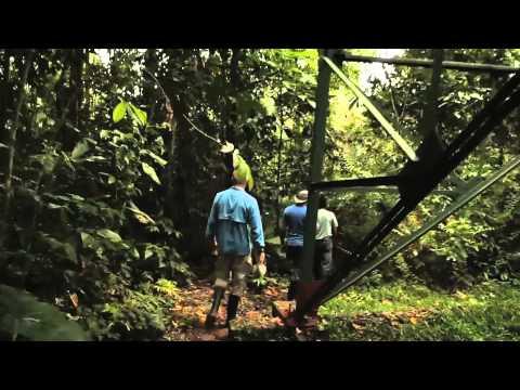 A wildlife and culinary adventure at Sacha Lodge