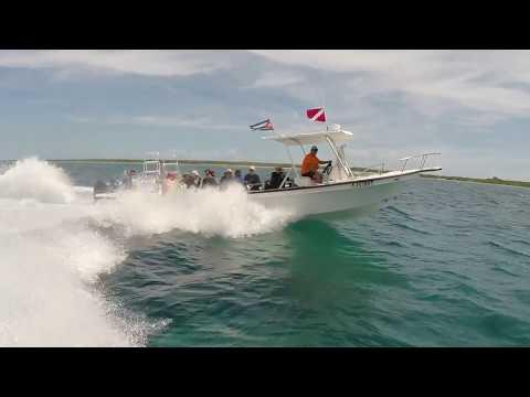 Scuba Diving in Cuba 2017