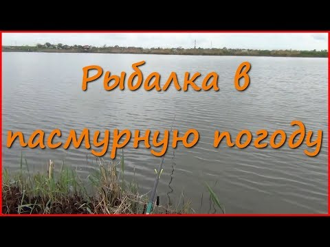 Рыбалка на карася в пасмурную погоду [Часть 1]