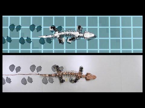 علماء يطورون روبوت يحاكي الديناصور  - نشر قبل 2 ساعة