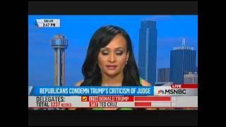 Katrina Pierson MSNBC appearance with Joy Ann Reid FULL