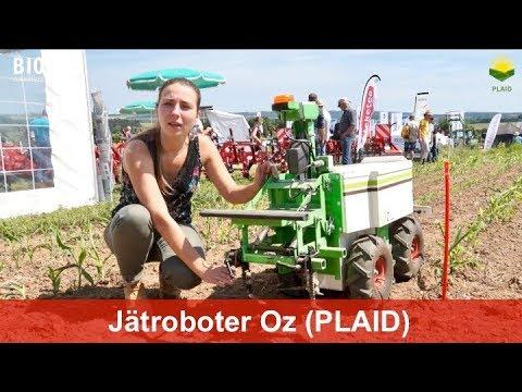 Download Oz - Ein Roboter zur mechanischen Unkrautregulierung für kleinere Gemüsebaubetriebe