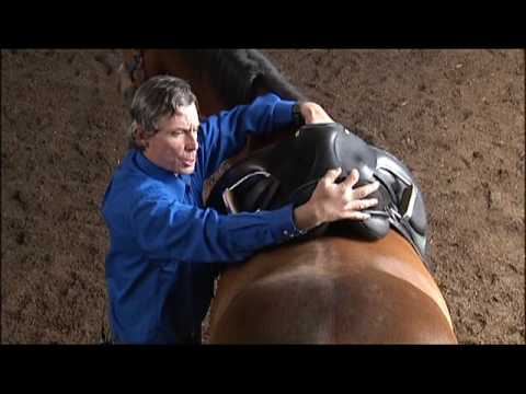 Saddle Fit with Jeff Moore