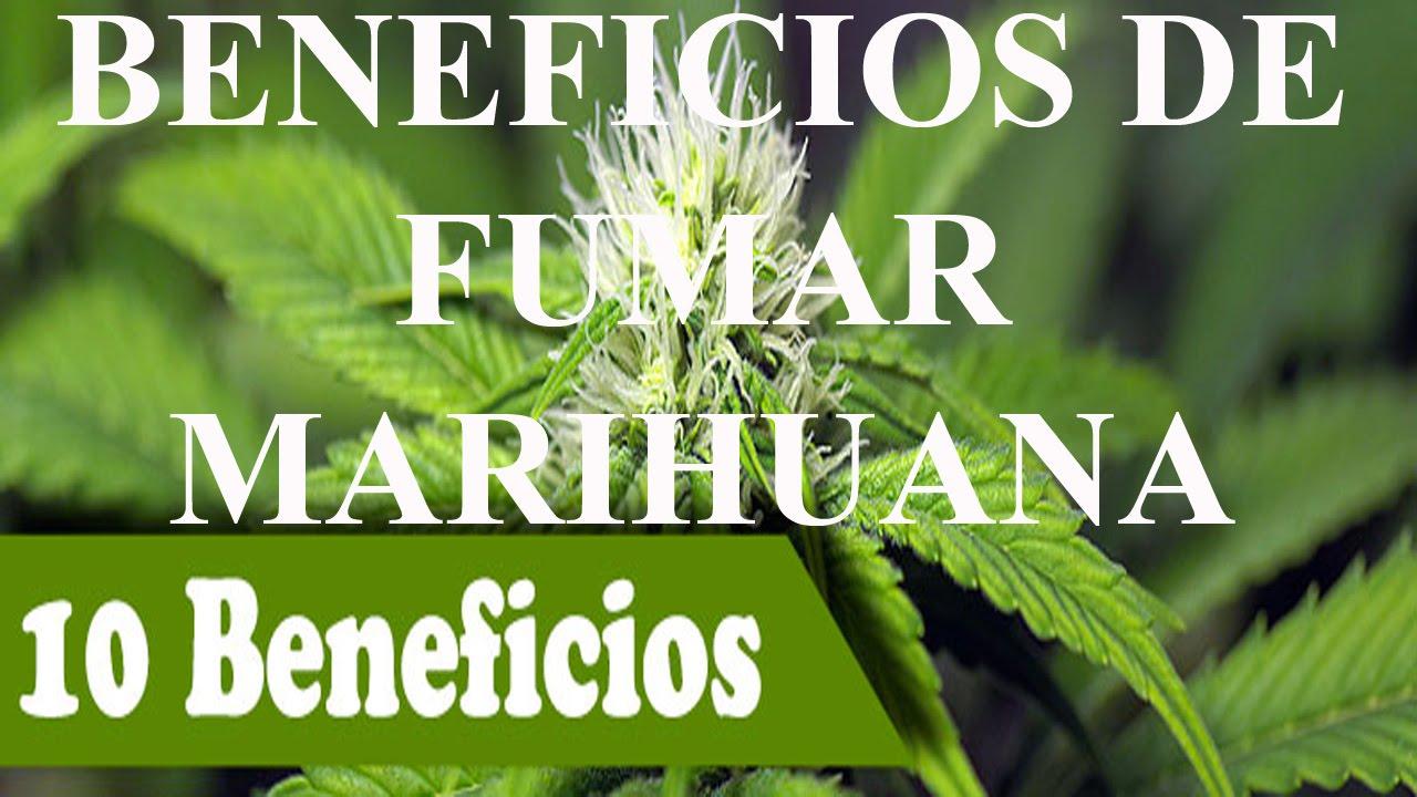 fumar marihuana efectos positivos Los efectos