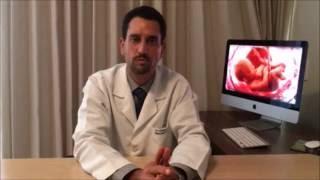 Inseminação Artificial - Dr. Vinicius Medina Lopes