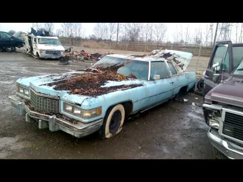 Very Rough 1976 Cadillac Coupe Deville in the junk yard - YouTube