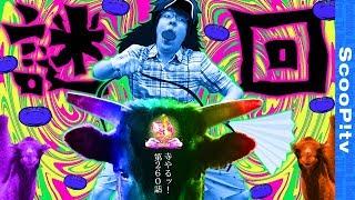 【謎回】寺井一択の寺やるッ!第260話 thumbnail
