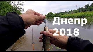 Рыбалка. Днепр после нерестового запрета 2018
