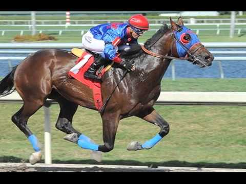 ECLIPSE AWARD 2016 N3