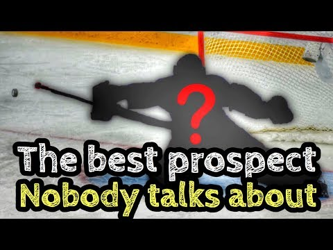 The Best NHL Prospect NOBODY Talks About