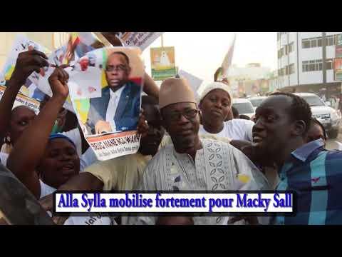Visite de Macky aTouba : Alla Sylla mobilise fortement