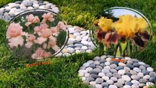 видео Цветы ирисы бородатые: фото, посадка и уход в грунт, сорта с названиями