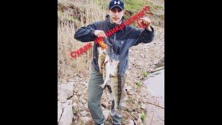Судак на микроджиг Ловля окуня и судака на водохранилище Влог с рыбалки