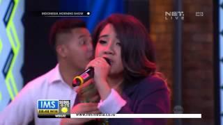 IMS - The Nelwans Marmut Merah Jambu