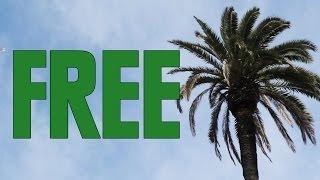 Free Things In LA