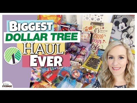 BIGGEST DOLLAR TREE HAUL EVER! || Back to School, Birthday, Organization and TOY Haul