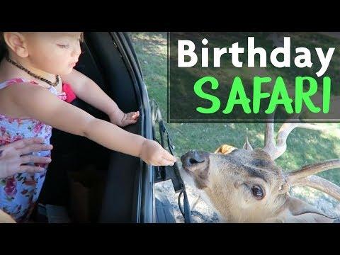 BIRTHDAY SAFARI!! || Zoie's 2nd birthday at Fossil Rim Wildlife Center