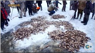 우올바 마을 얼음호수 고기잡이 (Spectacular Ice Fishing in Uolba, Russia)