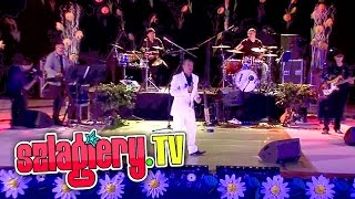 Goran Karan & Vagabundo Band - Vitre moj (LIVE)