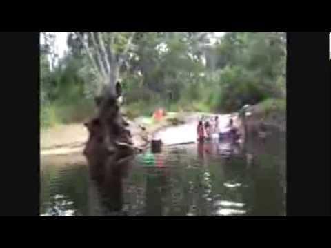 Amerindian Village Part 2
