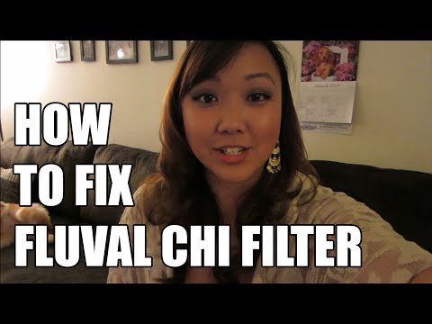 How to Fix Loud/Noisy/Bubbling Fluval Chi Filter