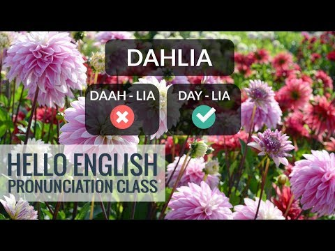 How To Pronounce English Words? How To Say Flower? Hello English Pronunciation Class 21