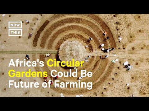 Farmers in Senegal Plant Drought-Resistant, Circular Gardens