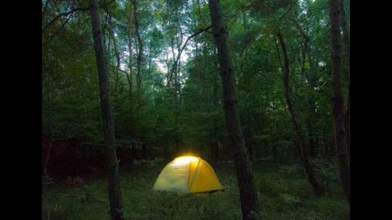 2 Creepy Camping Horror Stories (MADE UP)