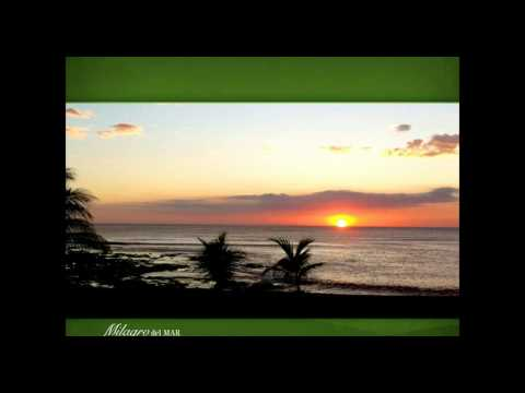 Milagro del Mar Webinar: Discover Everything You Wanted to Know About Nicaragua