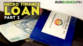 Loans for Farmers Part 2 : Cantilan Bank Micro-Finance Loan | Agribusiness Philippines