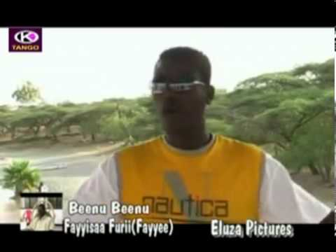 Fayyisaa Furii   Beenu Beenu (Oromo Music)