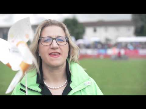 Largest display of toy windmills: energis GmbH sets world record   World Record Academy