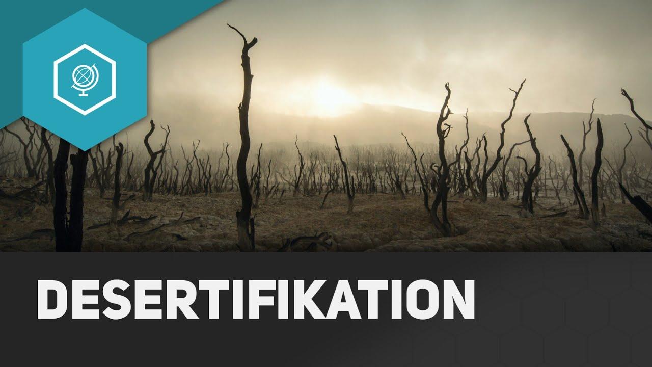 Desertifikation - Bodendegradation 3 ○ Gehe auf SIMPLECLUB.DE/GO ...