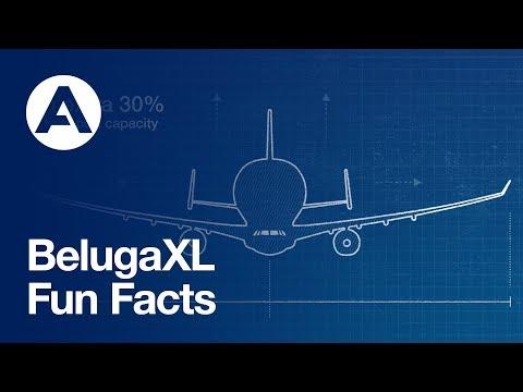 BelugaXL - Fun Facts