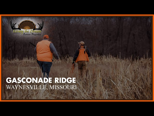 Gasconade Ridge   Pulaski County, MO