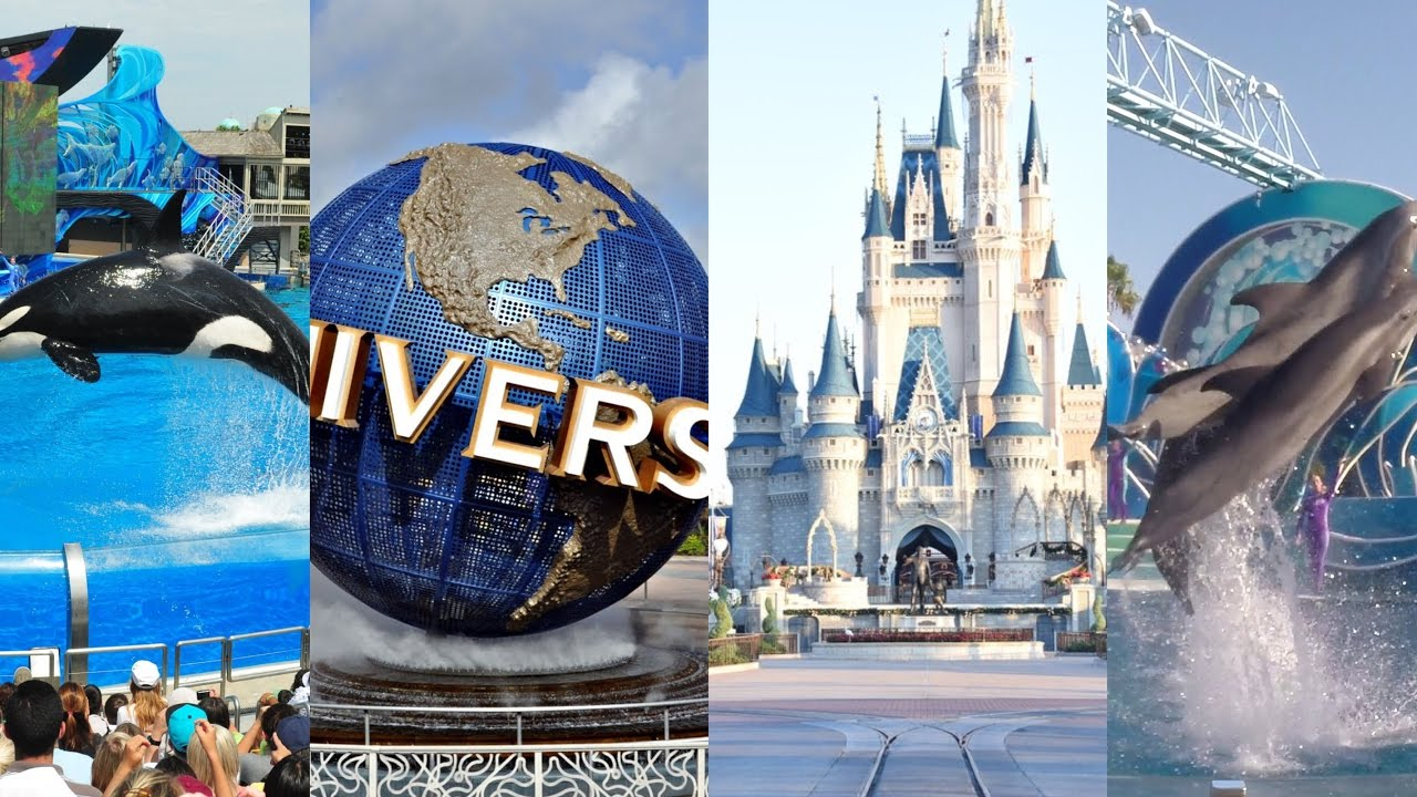 disney vs universal Sam compares parks, disney, universal, knotts, magic mountain universal has never been good with big crowds and now they are stuffed between construction walls and fewer things to do.