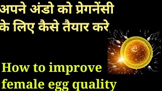 How to Improve egg quality to get pregnant fast || Food items to improve egg quality