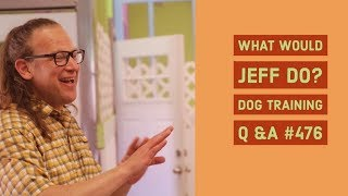 Puppy biting | Stop lunging Dogs | What Would Jeff Do? Dog Training Q & A #476