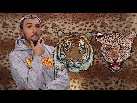 видео: +100500 - Как Выжить При Встрече с Леопардом и Тигром