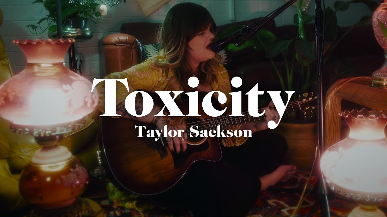 System of a Down - Toxicity Cover by Taylor Sackson