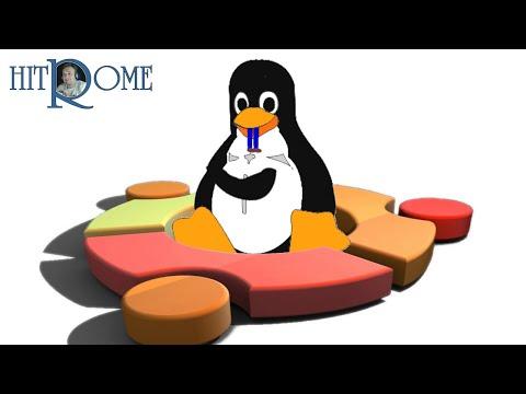 Установка Linux Ubuntu 19 04, краткий обзор