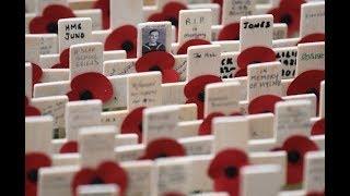بي_بي_سي_ترندينغ | #احمد_فاخوري يحكي لنا كيف يتذكر البريطانيون هؤلاء الذين فقدوا حياتهم خلال #الحرب