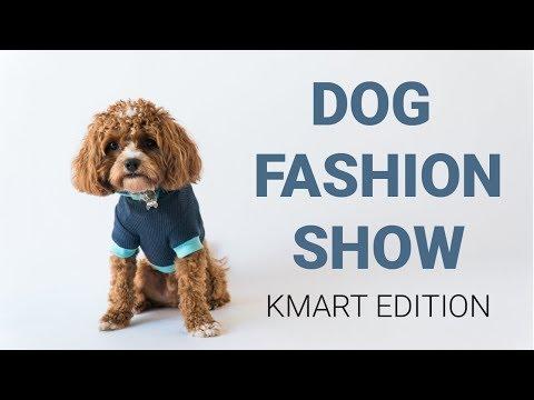 Cavoodle Models New Kmart Dogware Range