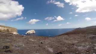 Ascension Island Conservation