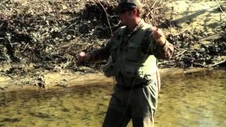 "Steep Canyon Rangers - ""Meet The Steeps: Woody Platt"""