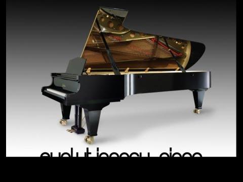 Evolutionary Piano Technical Presentation